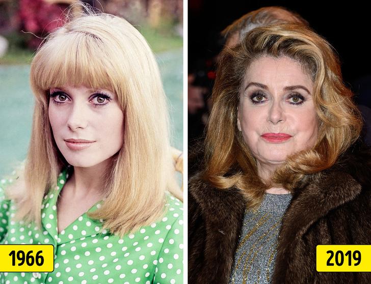 Как изменились знаменитости, которых называли секс-символами 1960–1970-х годов
