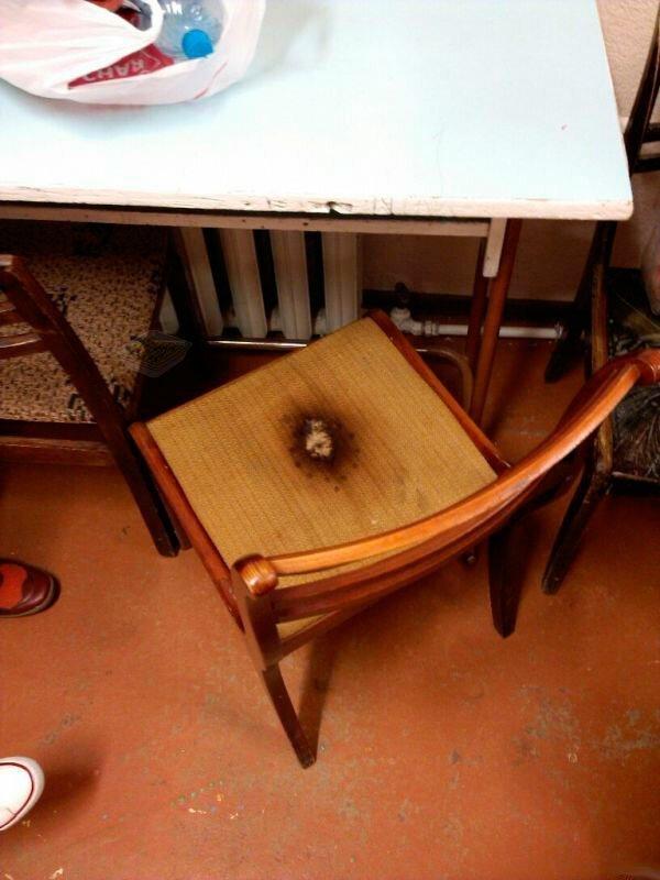 9. Когда нет гладильной доски, то все стулья выглядят примерно так Лайфхак, друзья, еда, общежитие, прикол, студенты, юмор