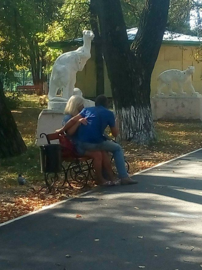А это, судя по всему, романтическое свидание