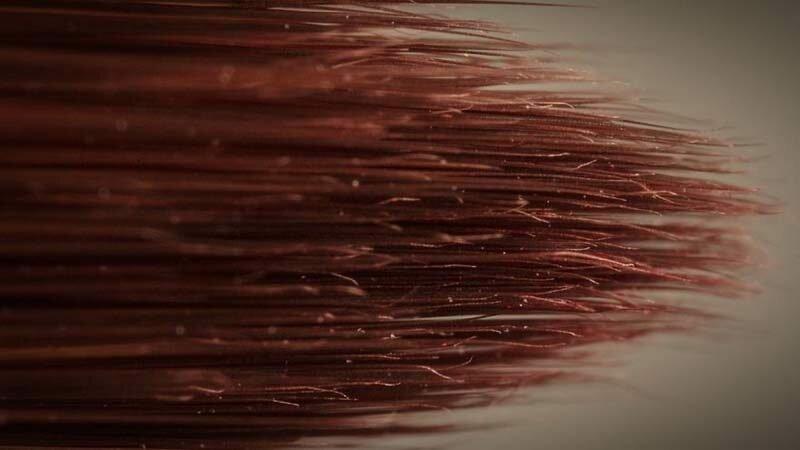 Кисть в мире, красота, макро, под микроскопом, познавательно, удивительно, фото