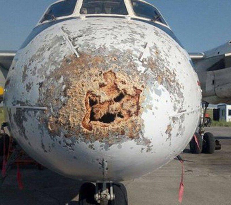"""2. Лайнер компании """"Полярные авиалинии"""" АН-24 совершал полет из Оленька в Якутск авиарейсы, пассажирский самолет получил повреждения, самолеты, фото, экстренная посадка"""