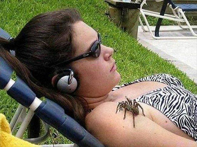 10. Хорошо, если это ее домашний паук гуляет авария, неудача, падение, праздники, провал, худший день
