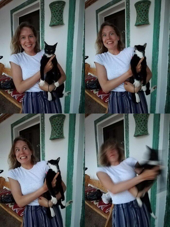 1. Это вам не собаки, у кошек очень сложный характер животные, кот, кошка, месть, прикол, смех, хулиган, юмор