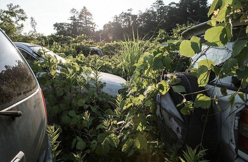 Зона отчуждения Фукусимы, заброшенная после аварии АЭС Фукусима-1, аэс, зона отчуждения, катастрофа, последствия, фото, фотограф, фукусима