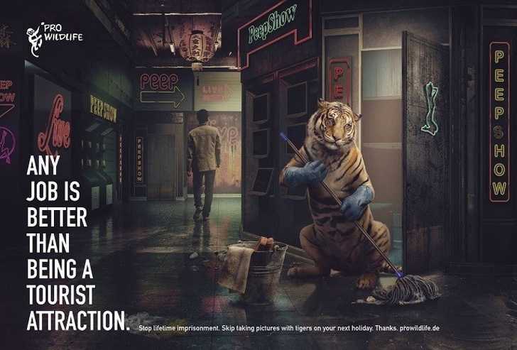 19 примеров социальной рекламы, которая без слов кричит о насущных проблемах