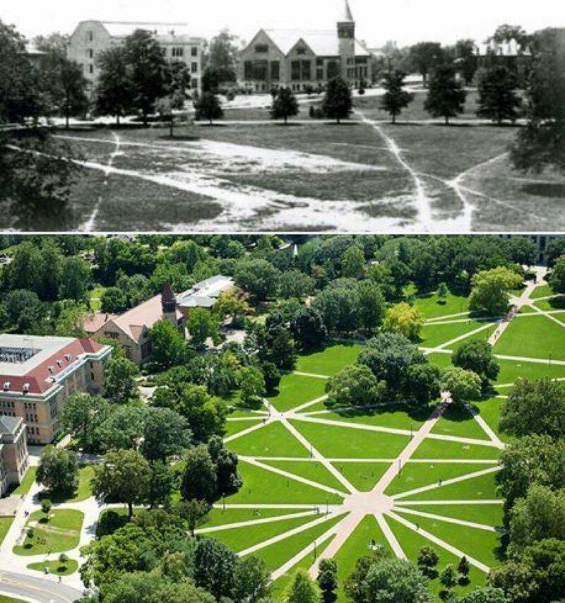 7. В Университете штата Огайо есть дорожки, но выложены они были на основе маршрутов студентов, которые ходили там когда-то интересно, любопытно, обо всем на свете, полезно, прикольно, факты, фото