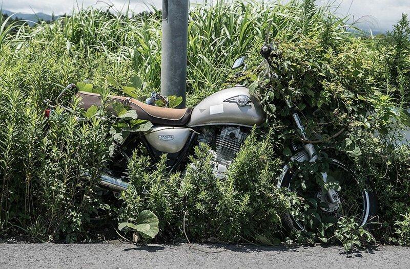 Одинокий мотоцикл, привязанный цепью к столбу, почти слился с травой АЭС Фукусима-1, аэс, зона отчуждения, катастрофа, последствия, фото, фотограф, фукусима