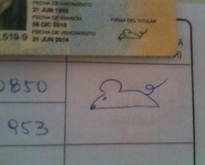 11. Кто-то рисует свое тотемное животное Подпись, автограф, подпись в паспорте, прикол, роспись, смешно, фото