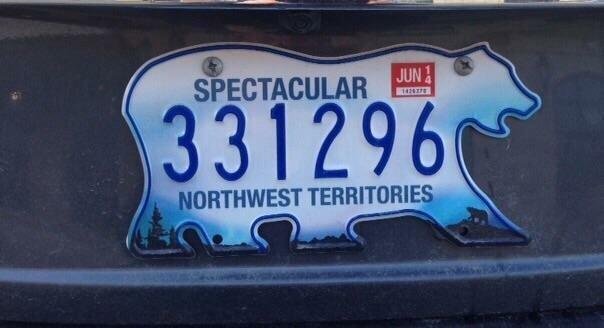 6. На северо-западе Канады номерные знаки делают в форме белого медведя белый медведь, занимательные факты, канада, клен, нло, отпуск