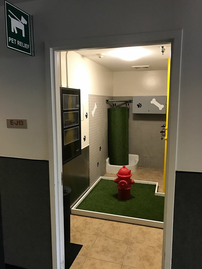 Прогулочная комната для собак в аэропорту Стиль, дизайн, идеи, комфорт, оригинально, свежий взгляд, творческий подход, удобство