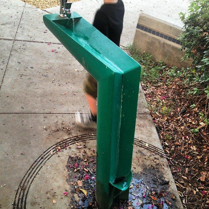 Фонтанчик для питья со специальным стоком для собак Стиль, дизайн, идеи, комфорт, оригинально, свежий взгляд, творческий подход, удобство