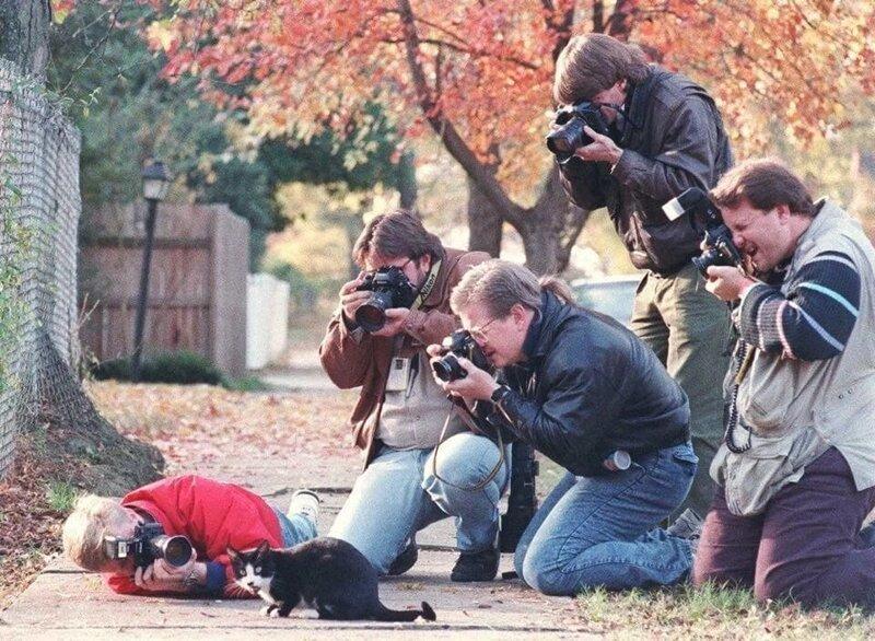 3. Фотографы и кот семьи Билла Клинтона, 1993 год интересно, исторические фото, история, фото, фото из прошлого