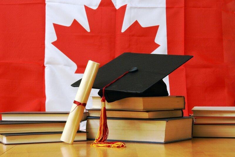 13. Канаду считают самой образованной страной мира белый медведь, занимательные факты, канада, клен, нло, отпуск
