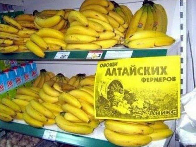 12. Так вот они какие, алтайские овощи надписи, объявления, прикол, россия, смешные объявления