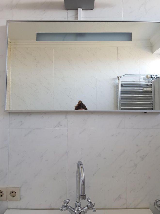 17. Зеркало в обычном туалете в Нидерландах