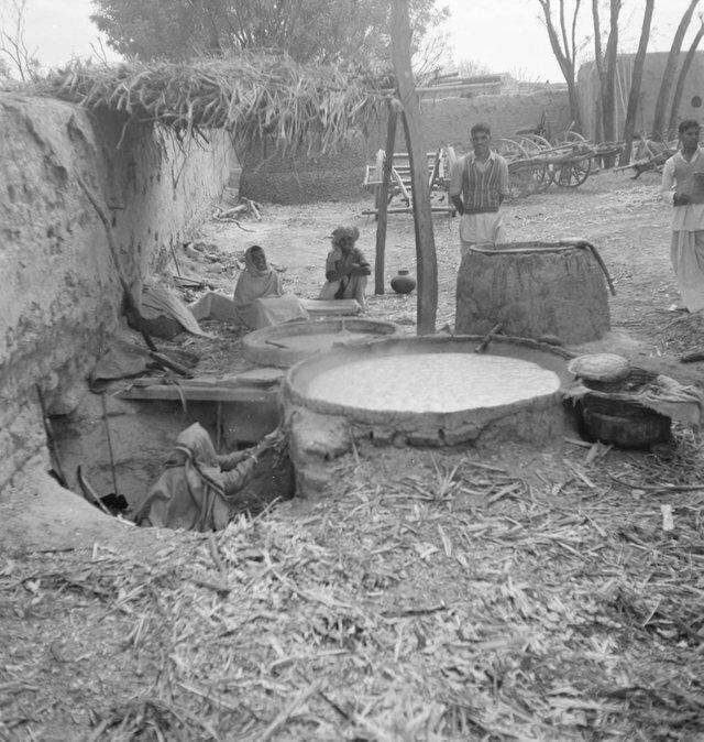 3. Женщина разжигает огонь, чтобы вскипятить сок сахарного тростника, Индия, 1952 год жизнь, исторические фото, история, прошлое, фото