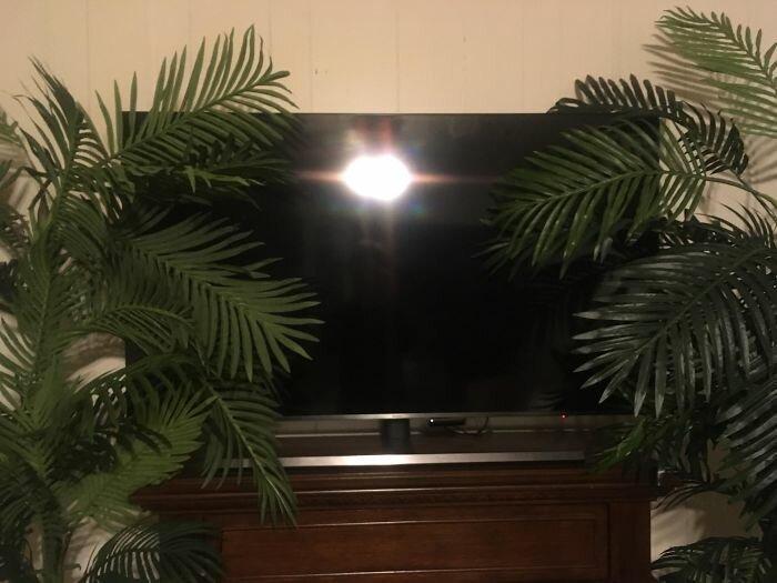"""35. """"Телевизор в комнате моей мамы"""" бесит, бытовые мелочи, достало, жизненные ситуации, жизненные трудности, раздражает, раздражающие вещи, юмор"""