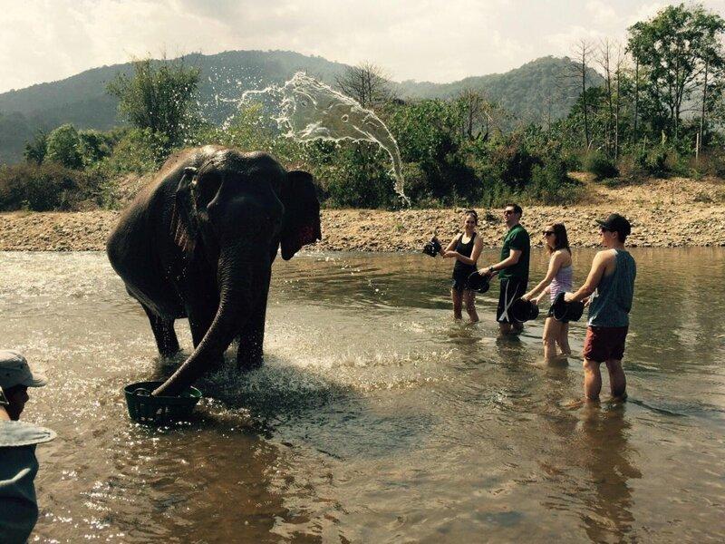 12. «Брызги воды над слоном тоже похожи на слона» обман зрения, фото, фотография