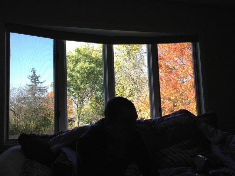 8. «Из-за этого окна кажется, что у меня на заднем дворе одновременно стоят четыре времени года» обман зрения, фото, фотография