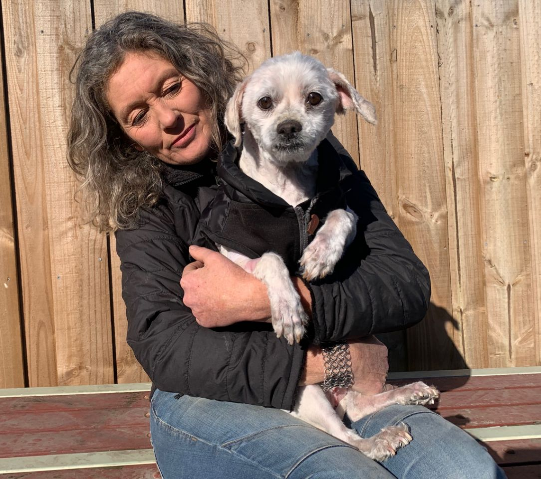 Семь лет пес видел мир только через окошко, зарастая колтунами: во что превратила его любовь